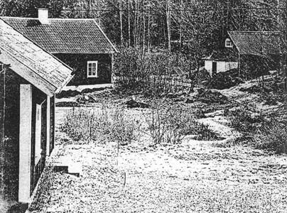 0596 Långmon.jpg