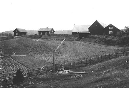 Mellansjö 1877