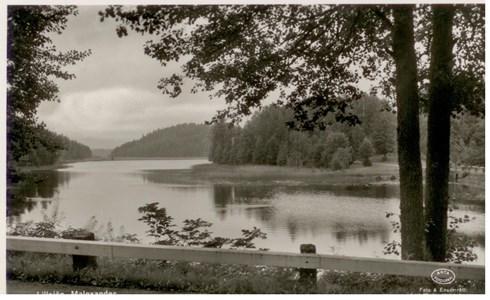 Malexander Lillsjön  1954