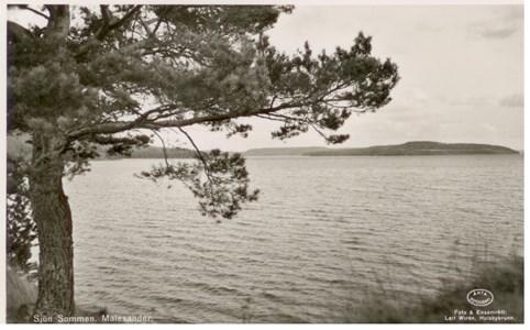 Malexander Sjön Sommen