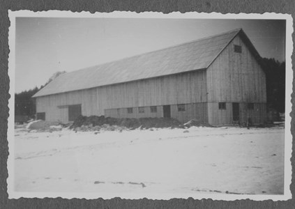 Nya ladugården i Moo klar 1951