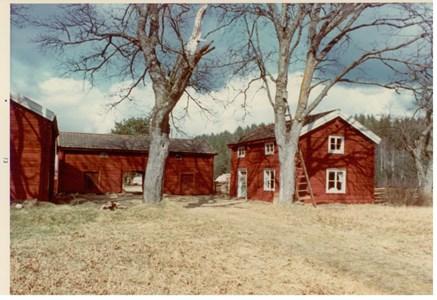 Björnön 1973