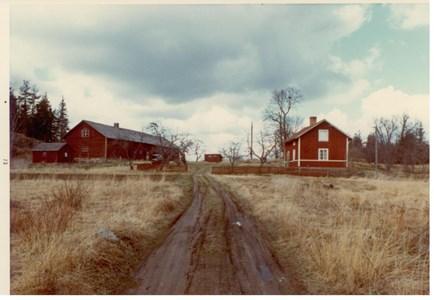 Kohagen 1973