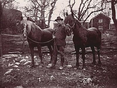 Johan i Bränna med häst.