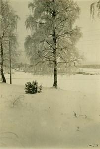 Vinterbild Marbäck