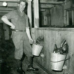Kalvutfodring
