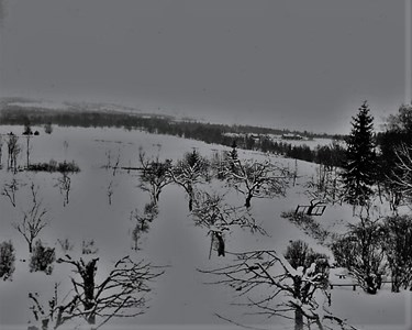 Vinterbild mot Helgarp