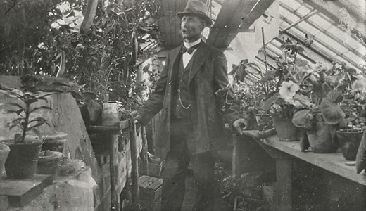 Trädgårdsmästeri