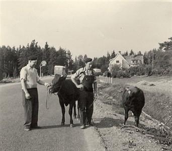 Kor på väg