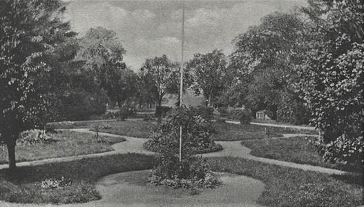 Vrangsjö trädgård