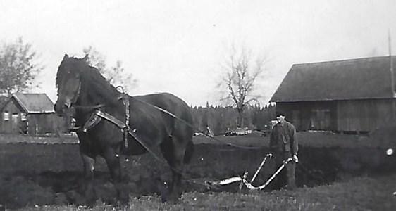 Högaberg, Eskil Adamsson med hästen Bojan
