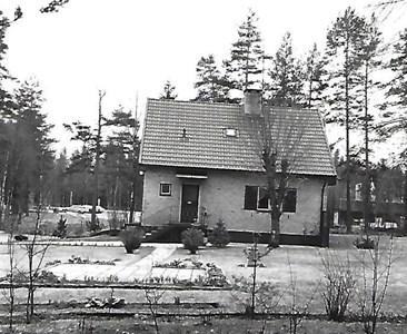 Jära Tallbacka 1985