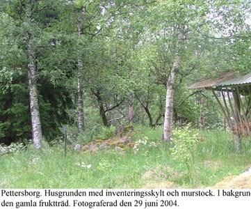 Pettersborg. Murstock.jpg
