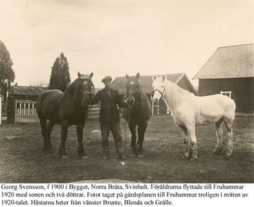 Fruhammar. Georg med hästar.