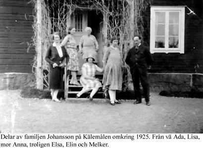 Fam Johansson, Kälemålen.
