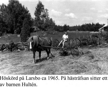 Larsbo höskörd.