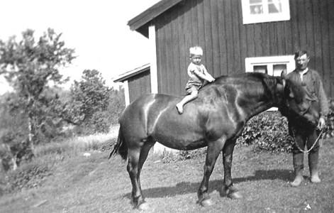 Fågelkullen. Karl och Sture Svensson.