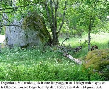 Degerhult. Sten och träd.