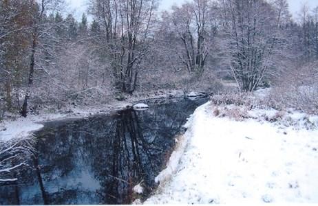 Bulsjöån vid nya bron Ådala.