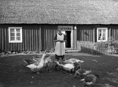 Matilda på Åsum