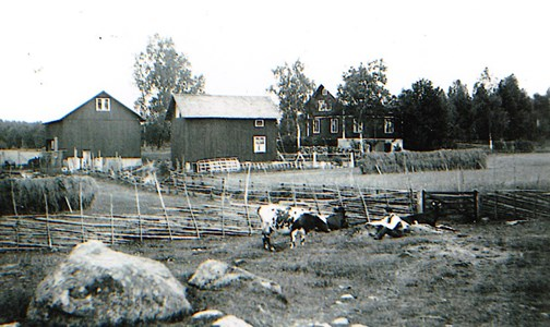 Hillgrens gård.jpg