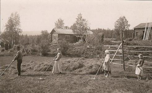 Hötäkt i Sjurby omkr 1912.jpg