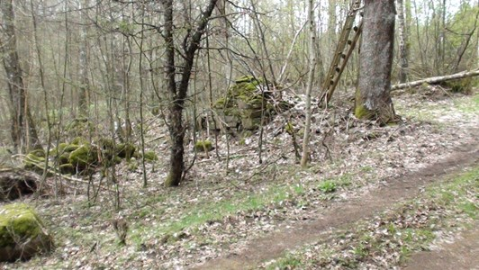 Ruinrester vid Skälledal i Bökesåkra 2018