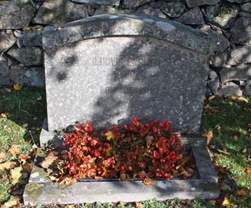 Gravsten Riseberga Ludvig Engman, Rynke familjegrav