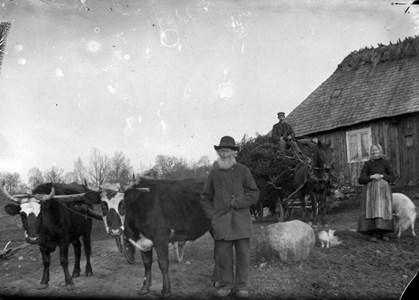 Ola och Sissela Persson i Bökesåkra. Mannen på lasset är trol. Ola Persson, f. 1837, död 1923 i Farstorp
