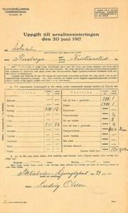 Arealinventering 1917, Äktaboden, Johan Jönssons