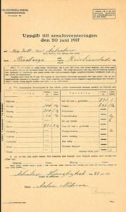 Arealinventering 1917, Åstratorpsgården