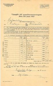 Arealinventering 1917, Svarvareboden, Olof Nils