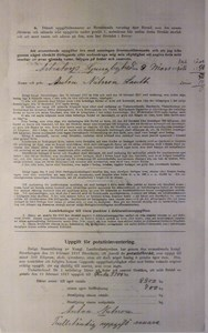 Deklarationsuppg. 1917, Åstratorpsgården, sid 2