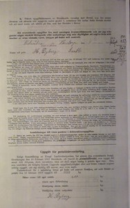 Deklarationsuppg. 1917, Bökesåkragården, sid 2