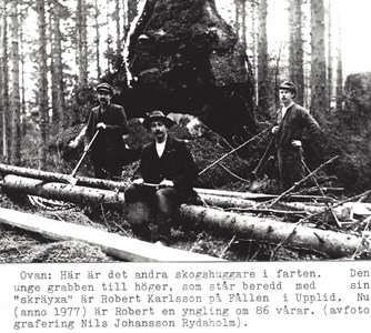 Skogshuggare från Upplid
