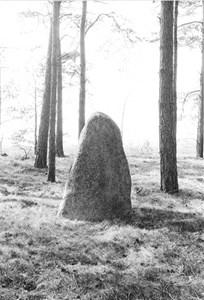 96-85-09 Fler stenar i Resta Stenar.jpg