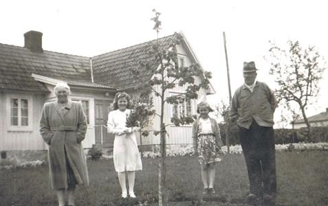 Bäckströms13 124MP..JPG