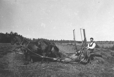 Skördearbete Igelösa 92-67.JPG