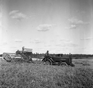 Skörd på Salby 1940