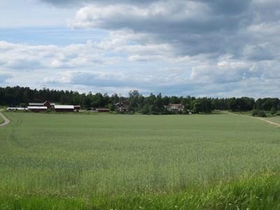 Kvicksta gård 2016