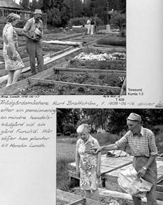 Trädgårdsmästeriet i Kumla