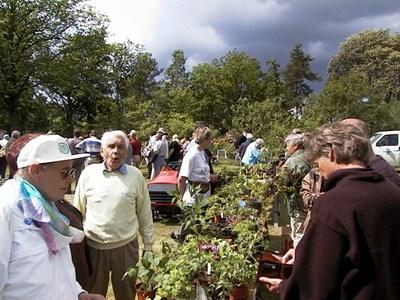 Växtmarknad hos Melker Lundkvist på Håsta kvarn år 2000
