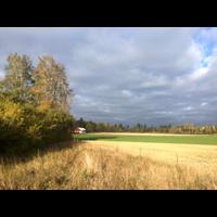Fjuckby höst
