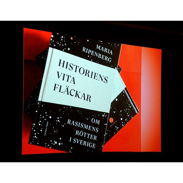 Boken Historiens vita fläckar