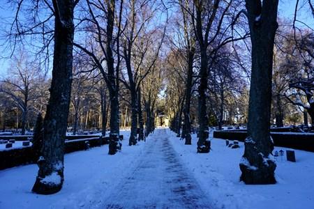 Torshälla kyrkogård, 2016