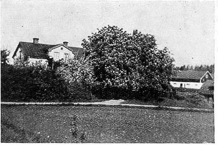 Stadstorp, 1938