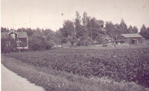 Stensborg 1 och Gökstenen
