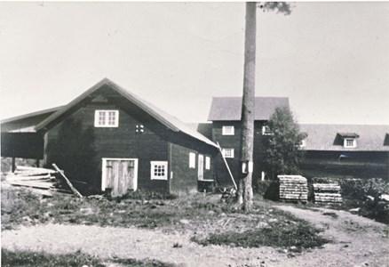 Torvströfabrik i Gubbo