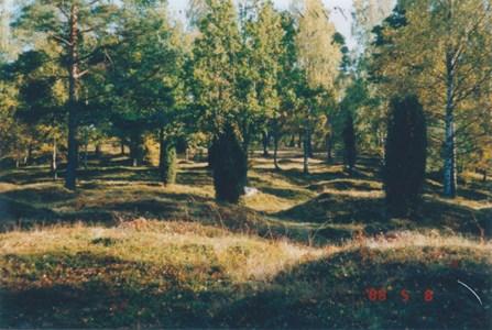 Ruben 7 - Björke hage gravfält från järnåldern