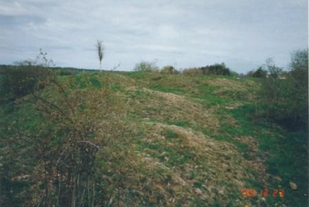 Ruben 9 - Malmåkersbacken gravfält från järnåldern